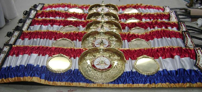 Mike Tyson Ring Magazine Belt
